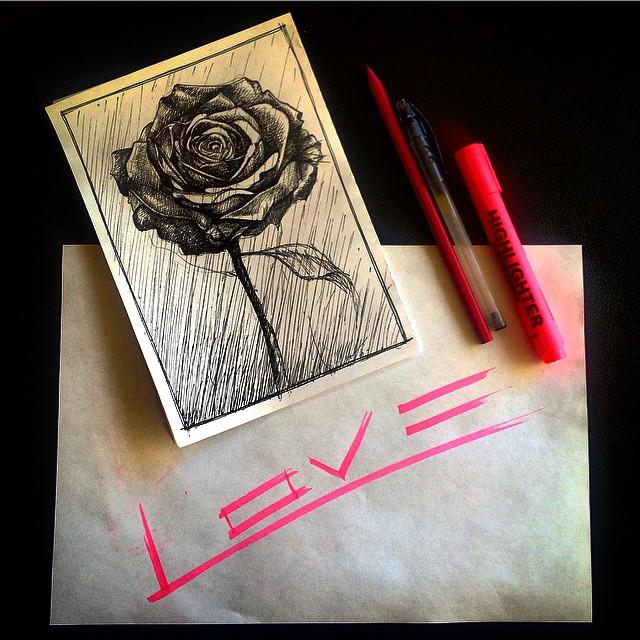 10.rose